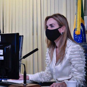 PL de Daniella integra grávidas a grupo prioritário