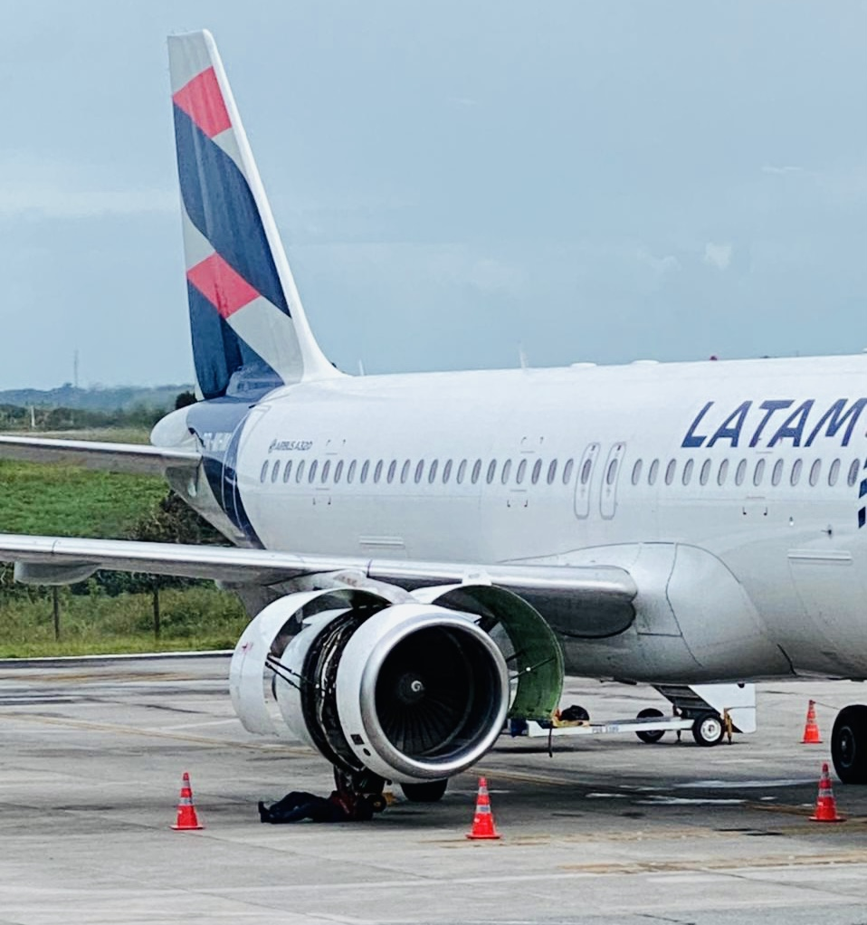 Avião é atingido por ave e retorna ao Castro Pinto